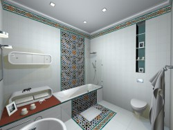 bathroom in options (1)
