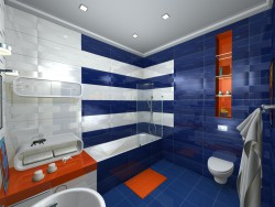 bathroom in options (2)