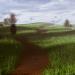 घास का मैदान