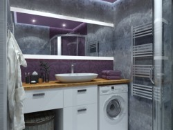 Purple bathroom Loft