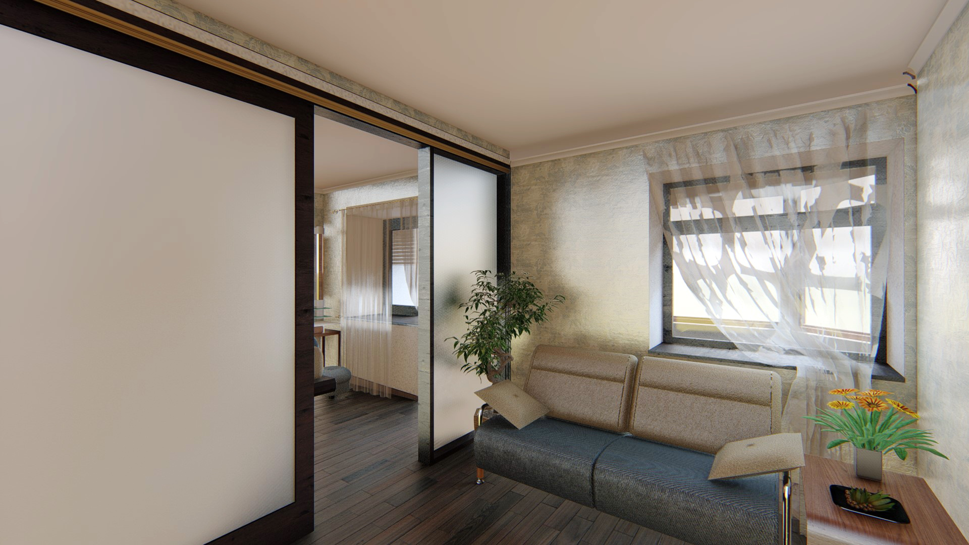 Separation of the hall in the apartment  3d visualization and design