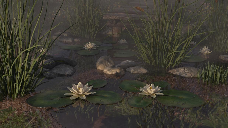 तालाब 3d max corona render में प्रस्तुत छवि