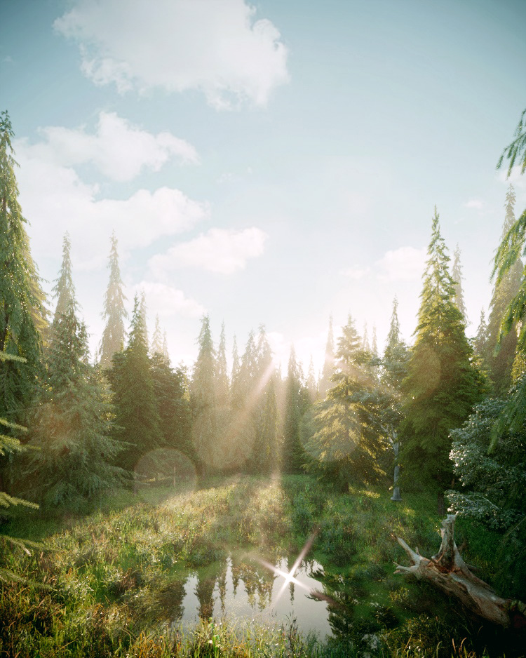 Forest-001-Corona in 3d max corona render image