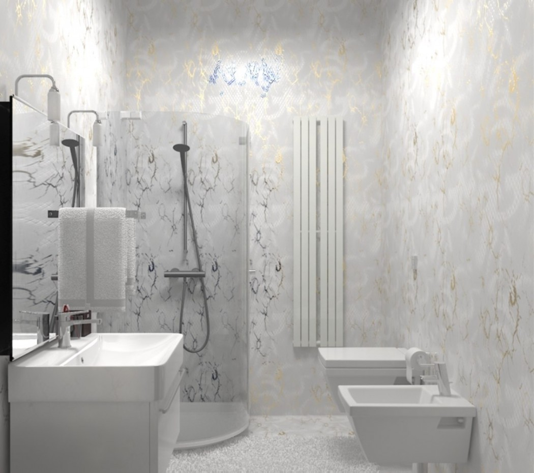 2 variants bathrooms. in 3d max vray image