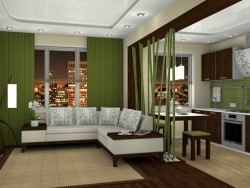 Living room-kitchen.