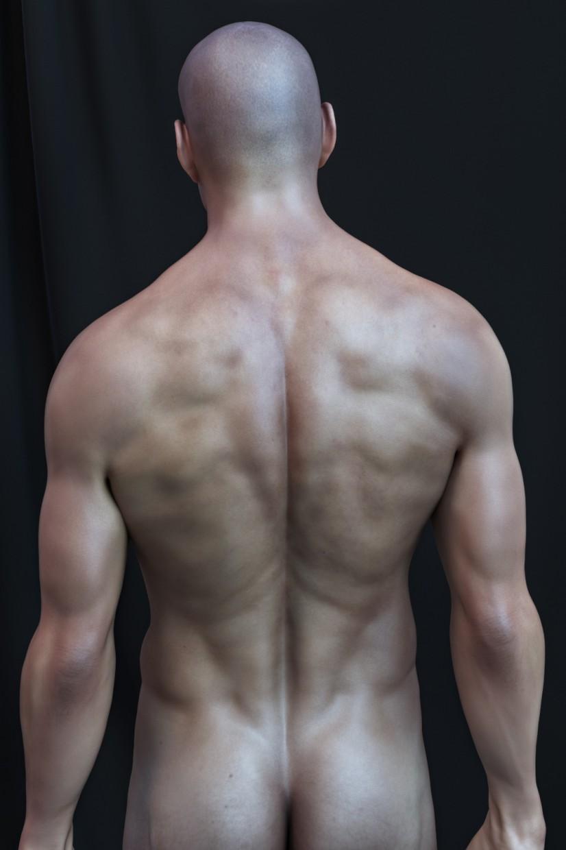 Anatomy Study in ZBrush vray 3.0 image
