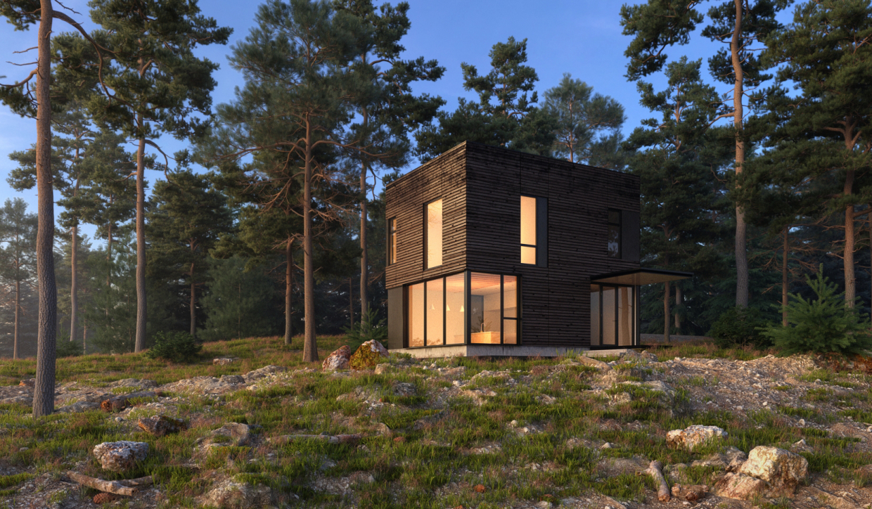 Forest house in 3d max vray 3.0 image