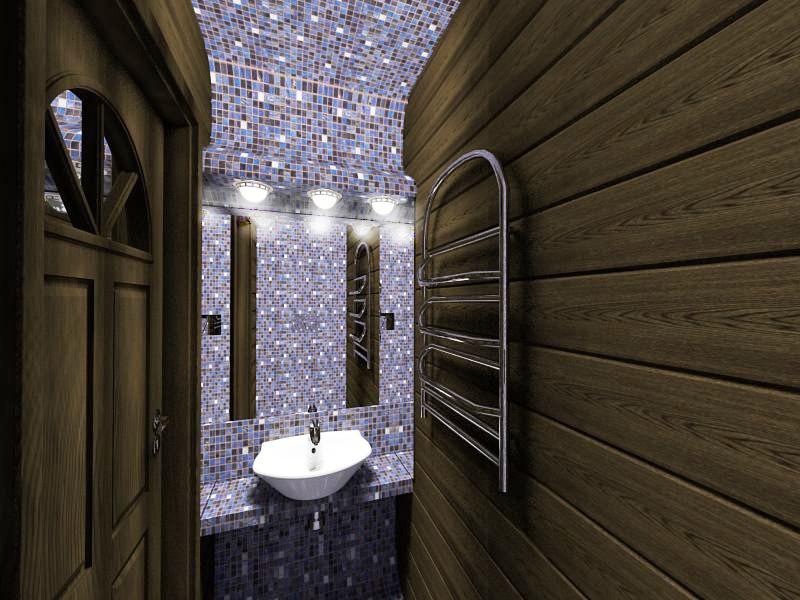 Some premises in bathhouse in 3d max vray image