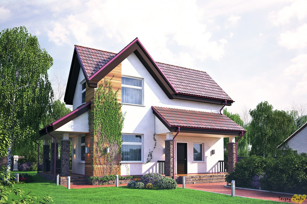 The House:)  in  3d max   vray  image