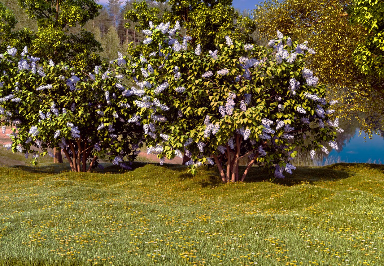 природа в 3d max corona render зображення