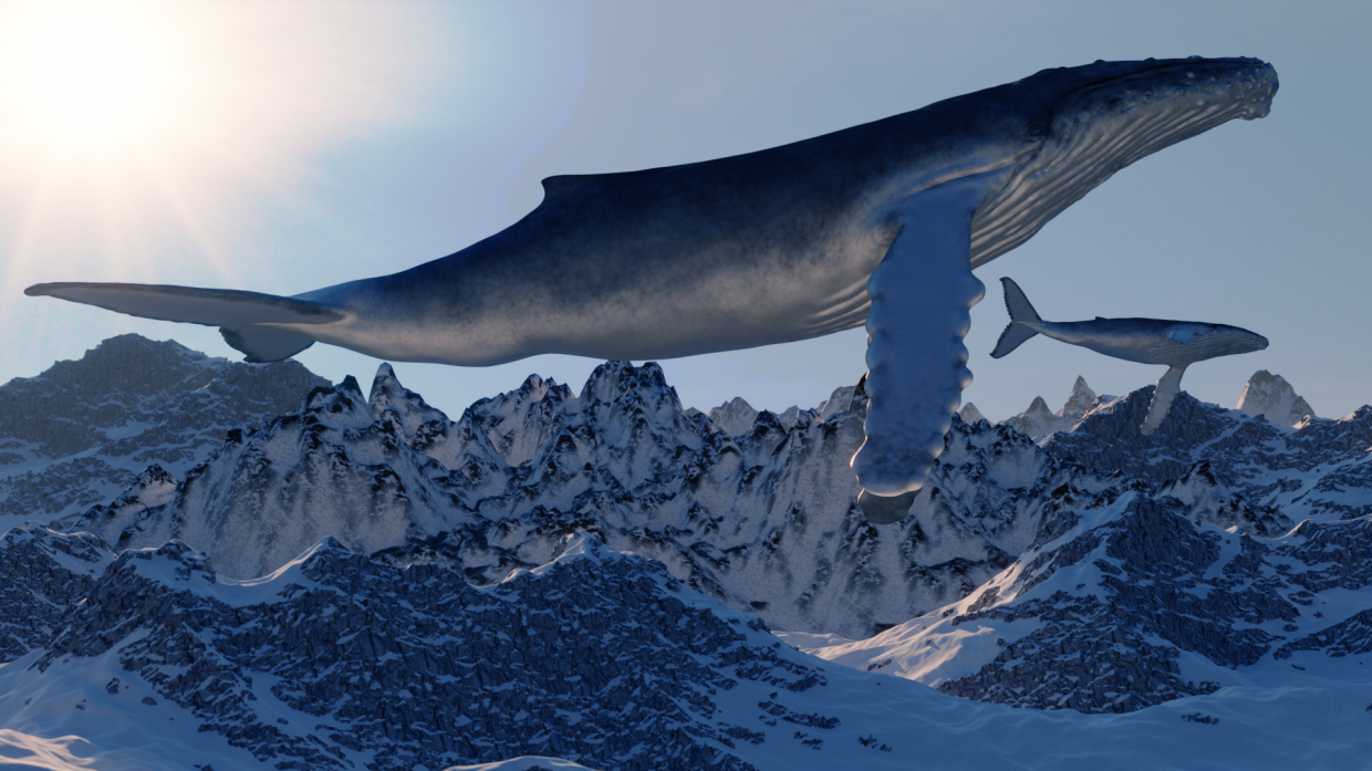 whale in Blender cycles render image
