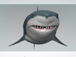 शार्क
