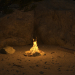 Bonfire in 3d max vray 3.0 image