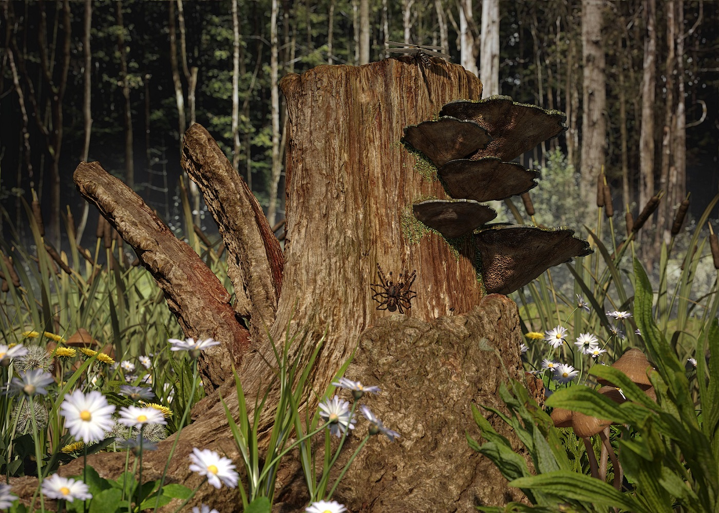 Such is the stump in 3d max corona render image