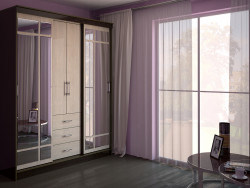 Wardrobe in the interior