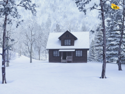 House in the winter forest