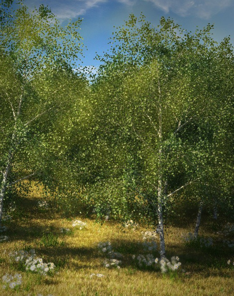 Simply a forest in 3d max vray image