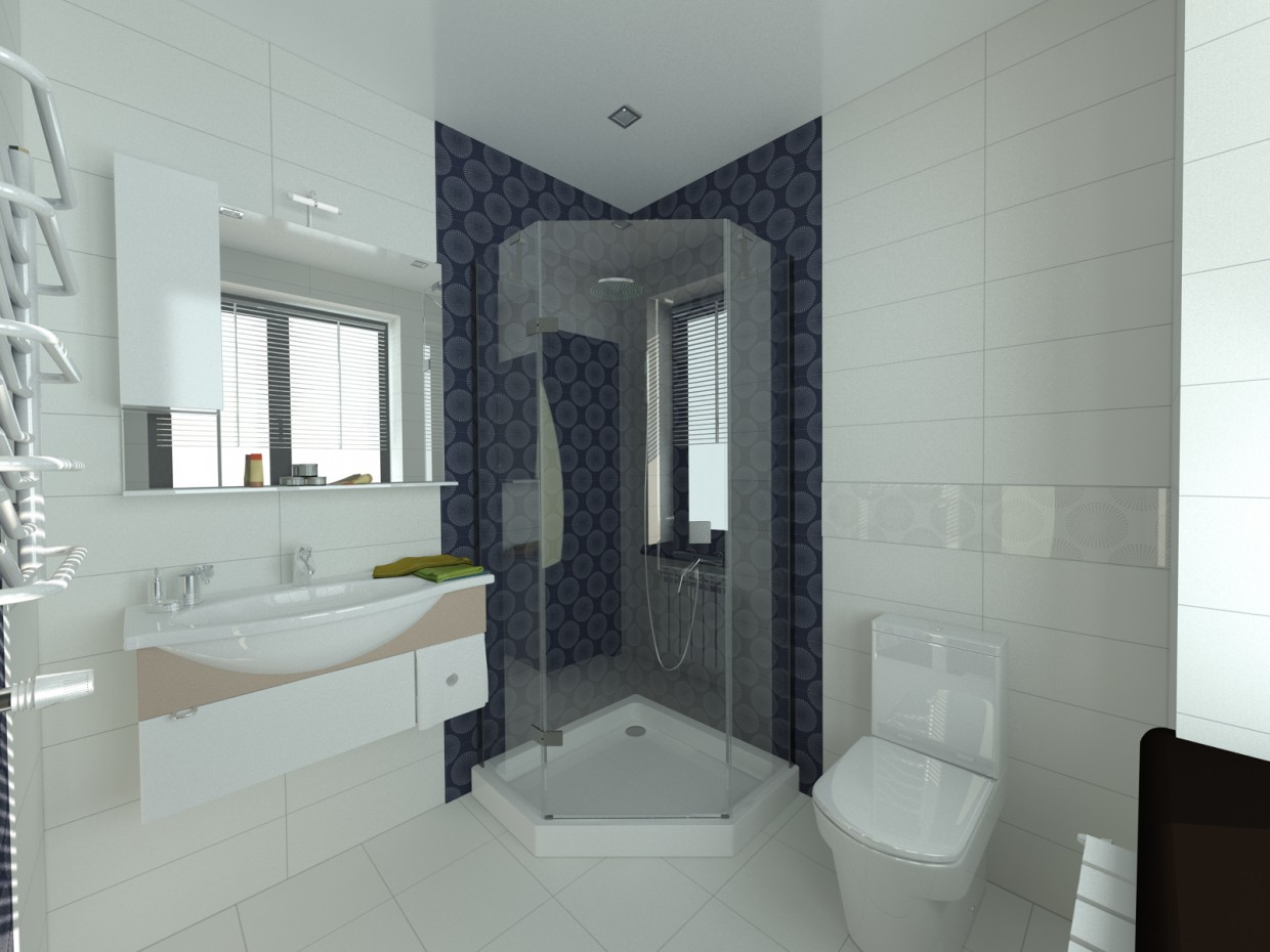 Guest bathroom (small house in Odessa)  in  3d max   vray  image