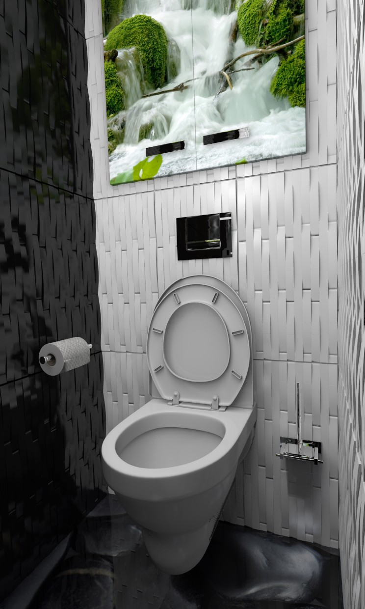 3d visualization of the project in the water closet Other thing, render Other of Charisma313