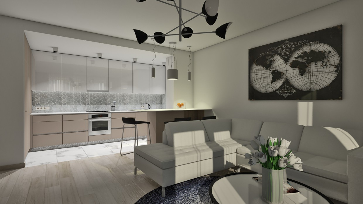 Demo interior for the new project in Riga in SketchUp vray 2.0 image