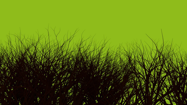 Grove in Blender cycles render image