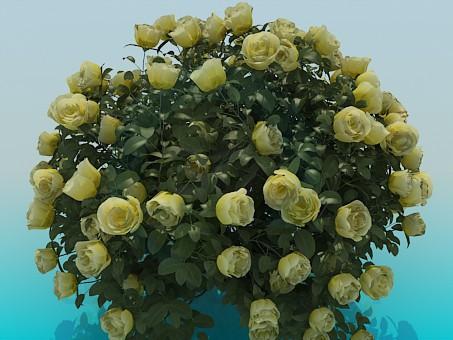 3d модель Пышный куст роз – превью