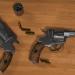 3 डी नागन - रिवॉल्वर M1835 3D Low_Poly मॉडल खरीद - रेंडर
