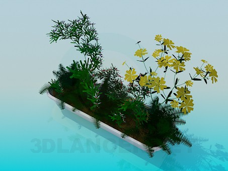 3d model Long flower pot with flowers - preview