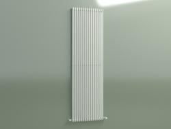 Radiator vertical ARPA 2 (1820 16EL, Standard white)
