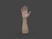 HAND-006 Rigged Hand