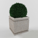 3d model bushes - preview