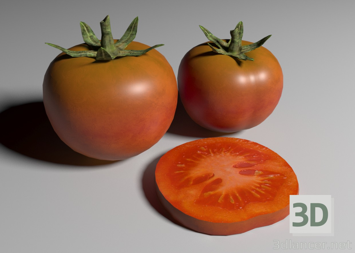 3d modeling Tomatoes model free download