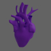 3d model Heart - preview