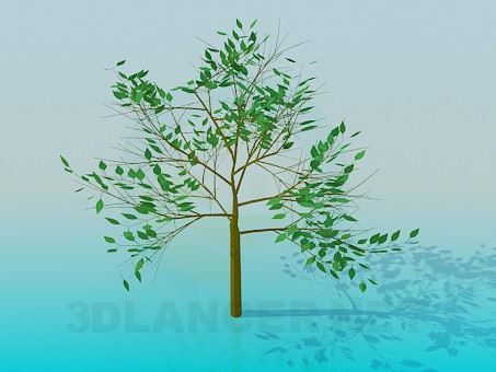 3d model Tree, 3ds, - Free Download | 3dlancer net