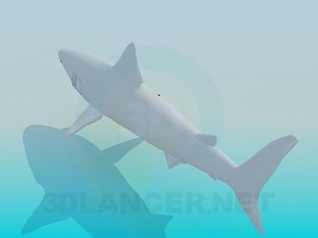 3d модель Акула – превью