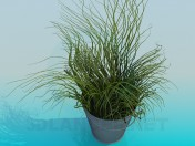 Bucket with decorative grass