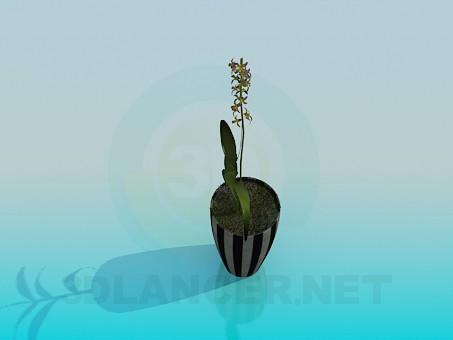 modelo 3D Pote de flor - escuchar
