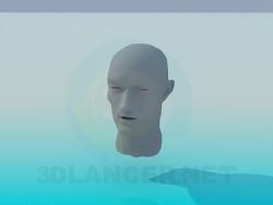 Cabeza de humano
