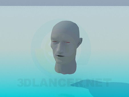 3d model Head of human - preview