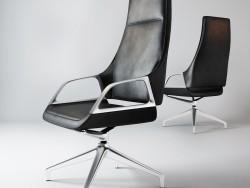 Conferência-cadeira