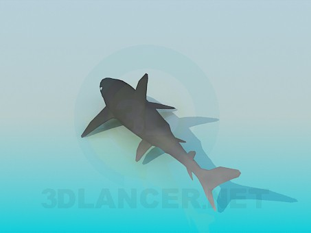3d модель Рыба – превью