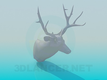3d model Head of deer - preview