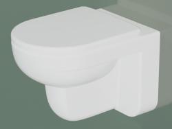 Wall-hung toilet Artic 4330 (GB114330201231)