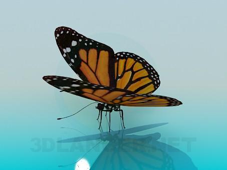 3D-Modellierung Schmetterling Modell kostenlos herunterladen