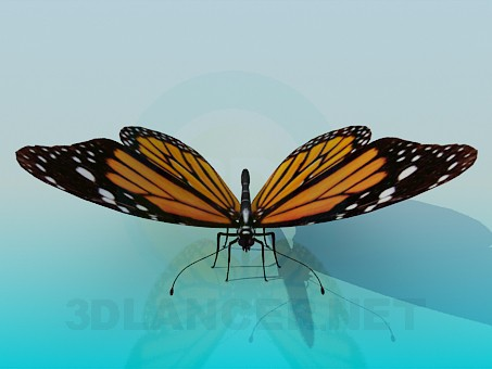 3d model Butterfly - preview