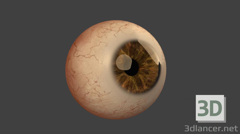 3d model Eye - preview