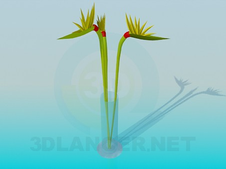 3d modeling Bouquet in a Vase model free download