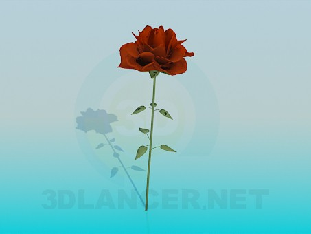 3d modeling Flower model free download