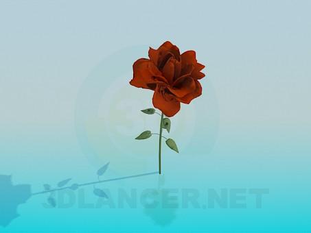 3d модель Цветок – превью