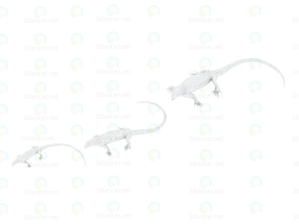 3d modeling Decorative shapes Lizard Silver model free download
